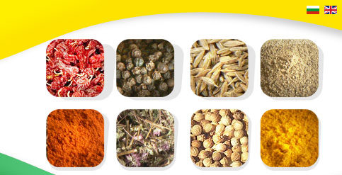 spices, papper, seeds